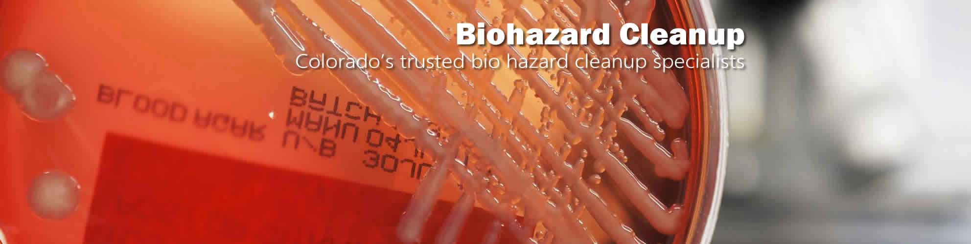 bio hazard cleanup Denver